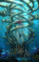 Pat-presley-coralreefzone-infinitree