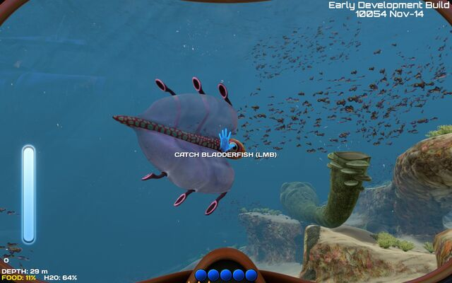 File:Life-form bladderfish-back.jpg