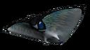 Skyray Fauna.png