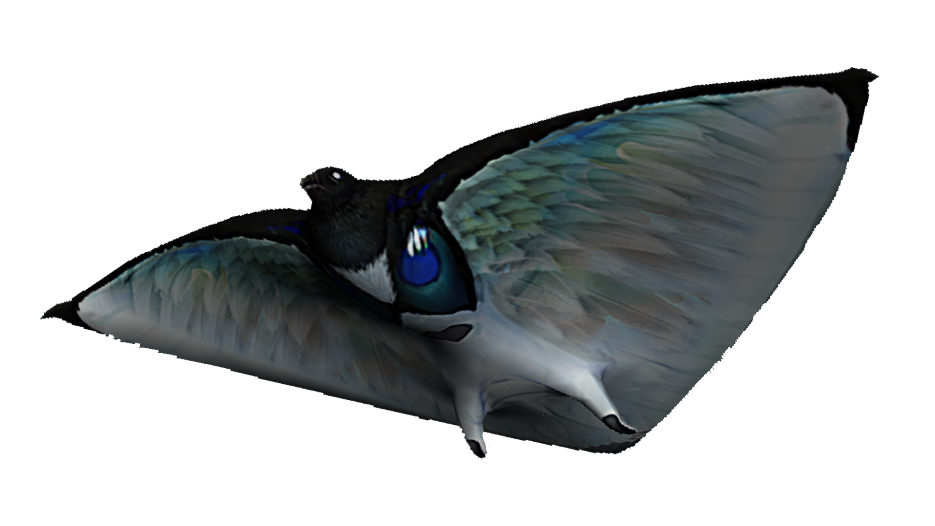 Datei:Skyray Fauna.png