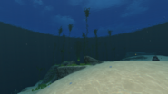 Dunes Kelp Forest Transition