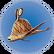 Cooked Garryfish