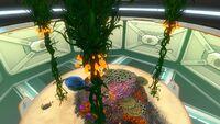 Large Aquarium (6)