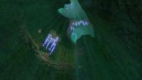 Kelp Caves miage