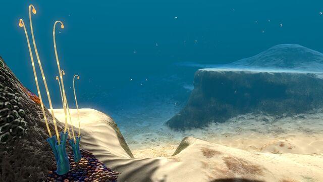 File:Blue Coral Tubes 10.jpg