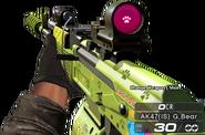 AK-47(IS)