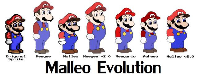 File:Evolutionofmalleo.png