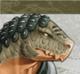 S3 Shiba Portrait
