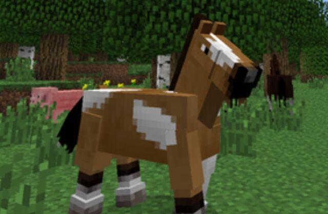 File:Horsey.jpg