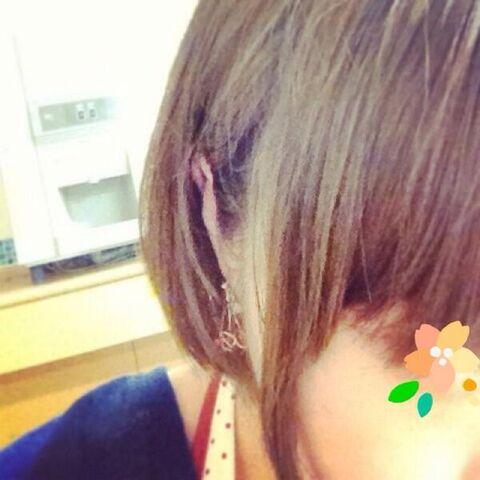 File:Hairs.jpg
