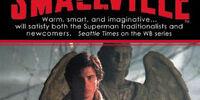 Smallville novels
