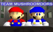TeamMushroomdors