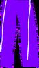 Vlcsnap-2013-04-03-06h31m37s50s - Copy