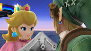 Link and Peach for a fight