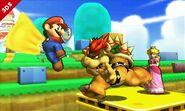 Mario, Peach, Bowser, 3DS