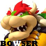 BowserProfile