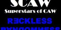 Reckless Randomness 2008