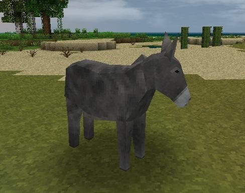 File:Donkey.jpeg