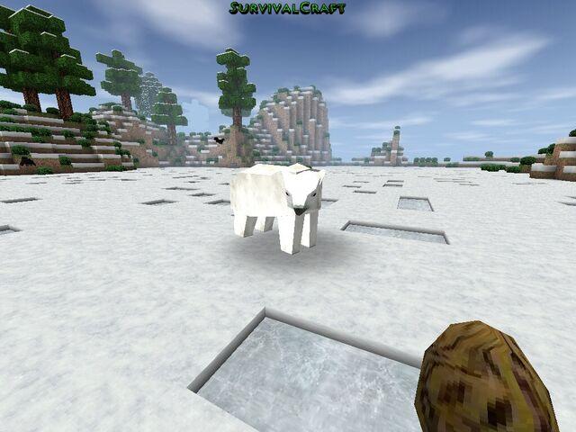 File:A polar bear..jpg