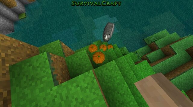 File:Survivalcraft 2013-11-13 00-31-44-.jpg