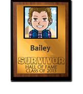 Bailey2013