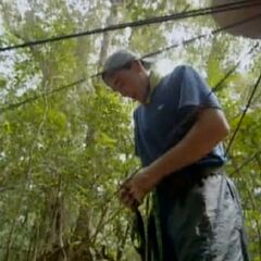 Sean at the Immunity Challenge, <a href=