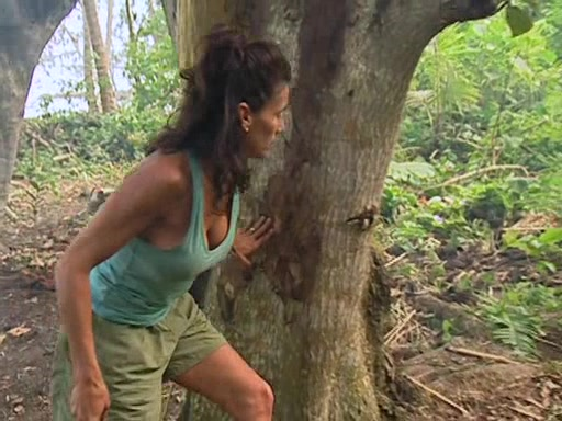 File:Survivor.Vanuatu.s09e02.Burly.Girls,.Bowheads,.Young.Studs,.and.the.Old.Bunch.DVDrip 231.jpg