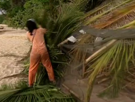 File:Survivor.S07E02.DVDRip.x264 058.jpg