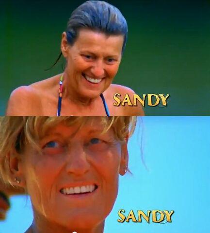 File:Sandy intro.jpg