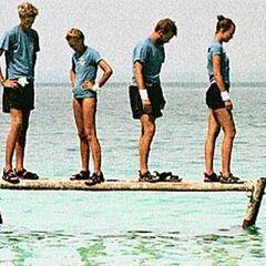 Plank 2000