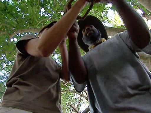 File:Survivor.Vanuatu.s09e07.Anger,.Threats,.Tears....and.Coffee.DVDrip 289.jpg