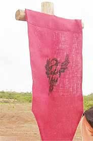 File:Araras flag.jpg
