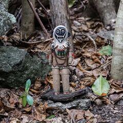 <i>Survivor: The Amazon</i> Immunity Idol.