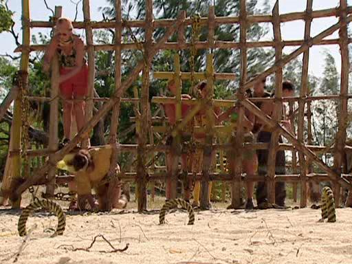 File:Survivor.Vanuatu.s09e03.Double.Tribal,.Double.Trouble.DVDrip 206.jpg