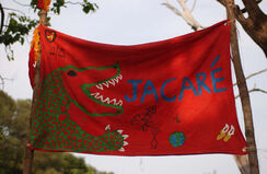 Jacare flag