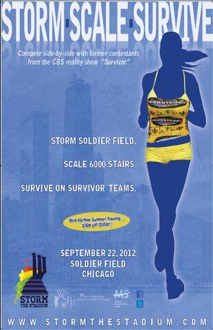 File:Storm the Stadium Poster .jpg
