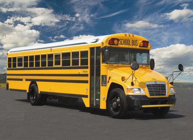 File:School-bus.jpg