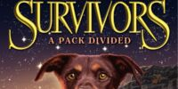 A Pack Divided/Gallery
