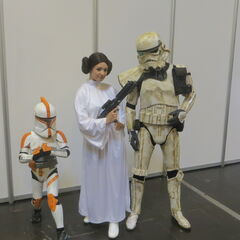 Princess Leia, a Stormtrooper, and a clonetrooper.