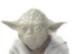 File:YodaCat.PNG