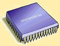 File:Chip.JPG