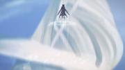 Kirito flying high