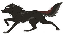 Aion's Wolf form.