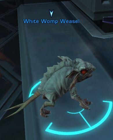 File:White Womp Weasel.jpg