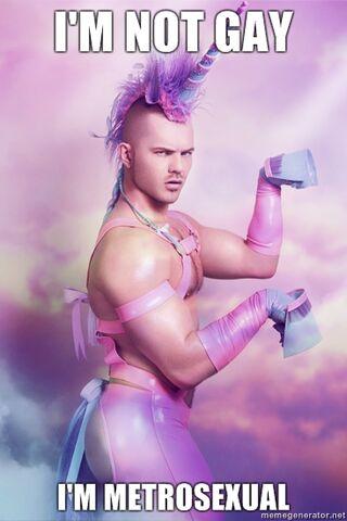 File:Im-not-gay-im-metrosexual.jpg