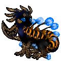 Image builder pet (4)