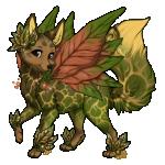 Nixi female