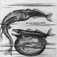 Black Swallower