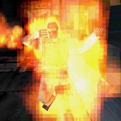 Flaming Terrorist