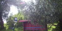 Kutrowa(przystanek)